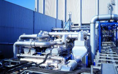 Dry Air Plant